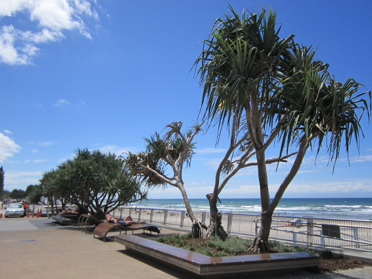 nábřeží Gold Coast
